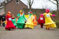 Optocht 2014 - Zorgboerderij De Krakenburg - Een gemend bal met Colori's carnaval